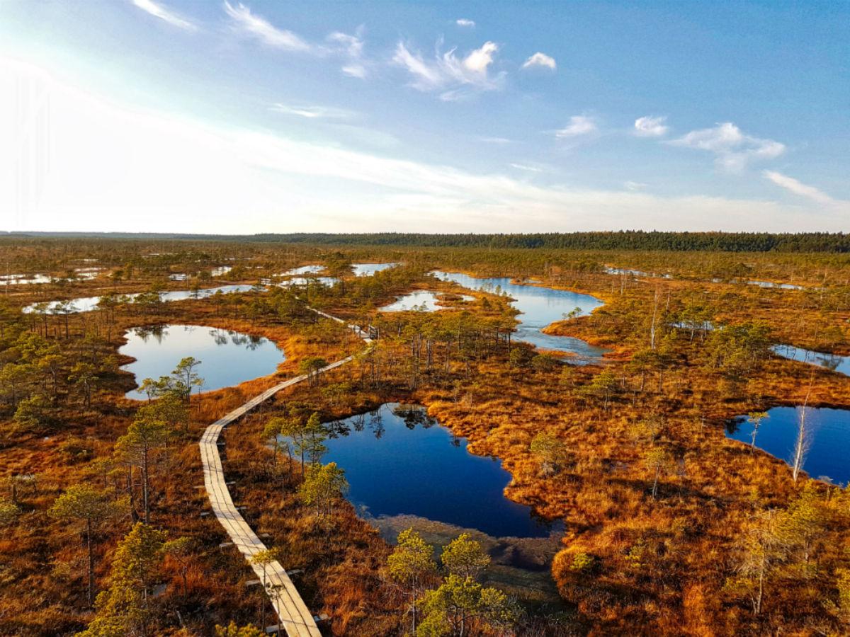 Latvia _ Great Kemeri Bog